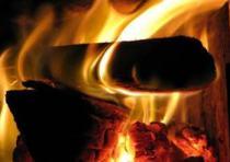 desunião, lenha, ilustração, fogo, vida