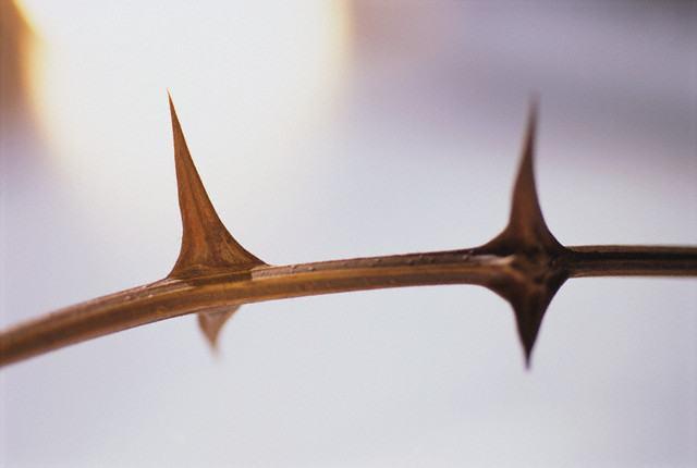 O que era o espinho na carne que Paulo teve de suportar?