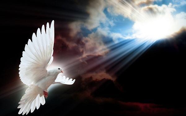 Resultado de imagem para espirito santo de deus