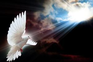 Precisamos dar liberdade para o Espírito Santo agir?