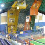 Muro de San Juan de los Morros 2008