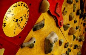 Muro ECED, Logo Mutante.com.ve - Foto Gabriela Flogar