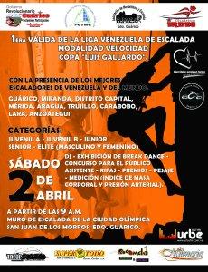 Poster 1ra Valida de velocidad Liga Venezuela de Escalada 2011