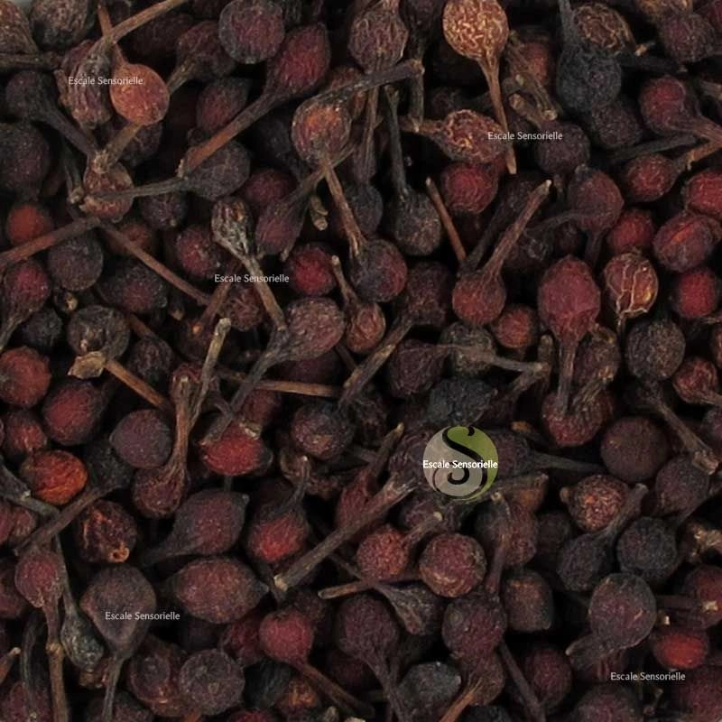 poivre rouge voatsiperifery de madagascar