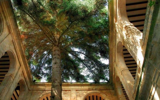 Monasterio de San Pedro de Arlanza