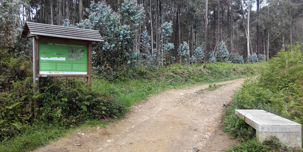 Mini-ruta de senderismo Costa Doce, con niños