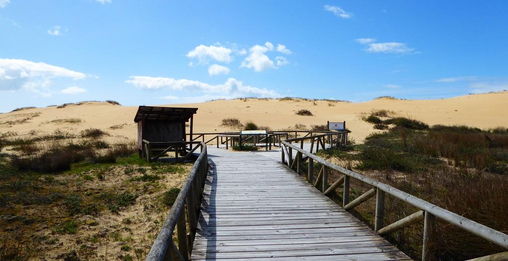 El parque natural más visitado de Galicia: Corrubedo con niños