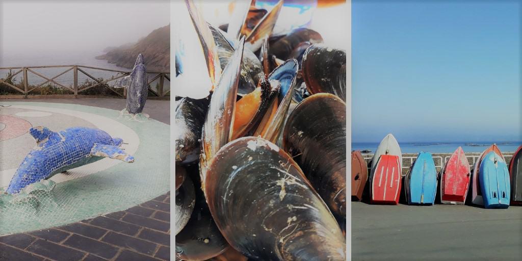 Mini-ruta de los delfines en Dexo