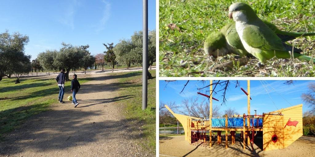 El Parque Juan Carlos I de Madrid con niños