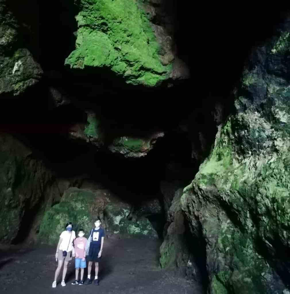 Cueva de musgo luminiscente