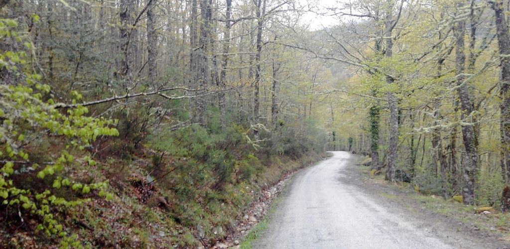 Reservas de la Biosfera de Galicia Ancares