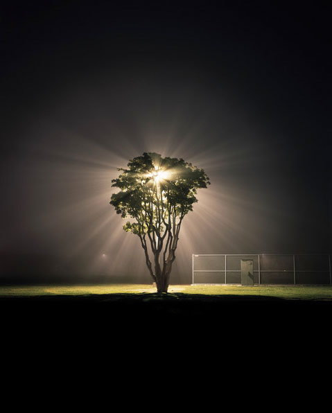 Friedman_night_03