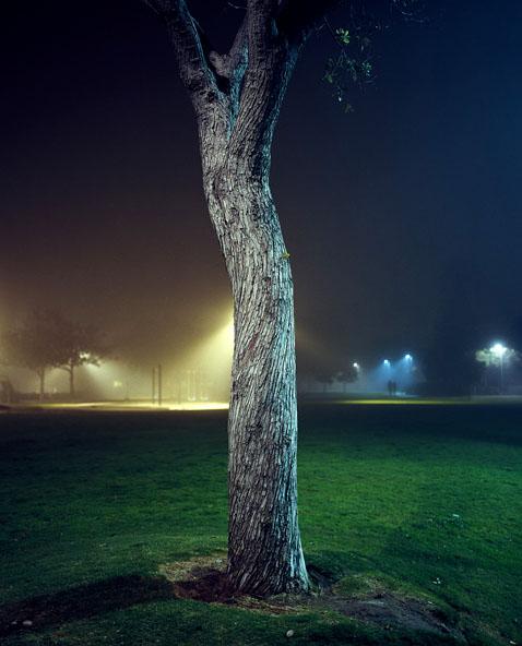 Friedman_night_07