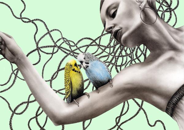 escapeintolife birds
