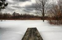 Mahbubur-Rahman-bench-in-snow1