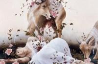 Ai Shinohara, animals, lace