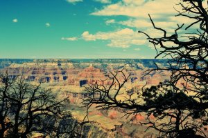 Top 3 natural wonders to explore in the USA