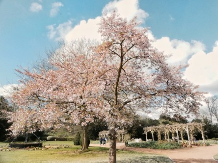 Essex has far more to offer than meets the eye. It's full of beautiful locations and is so close to London. Here are 3 stunning places you cannot miss!