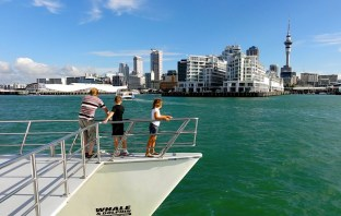 Auckland has far more to offer than meets the eye. Make sure you don't skip past it by checking out this guide on how to spend an awesome day in this city.
