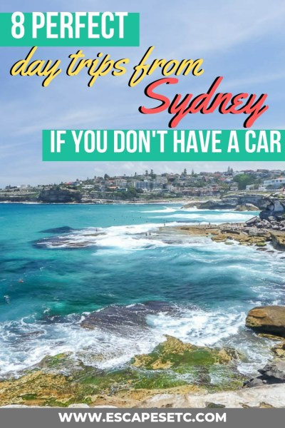 Nothing beats a good day trip and if you're based in Sydney, you'll find yourself spoiled for choice! Within a couple of hours you can be in the mountains, laying on a beach, watching pelicans or hiking through a national park. What's even better is you don't need a car to get to them! Here are 8 of the best day trips from Sydney that you can take using public transport. #sydney #sydneydaytrip #australia #nsw #newsouthwales #thingstodoinsydney #topthingstodoinsydney #bestplacesnearsydney