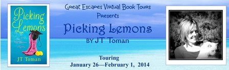 large banner picing lemons 448