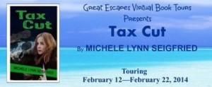 tax cut cropped 314
