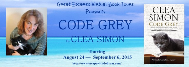 code greyl arge banner640