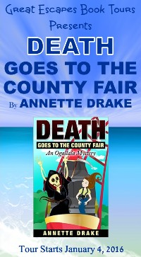 DEATH COUNTY FAIR small banner