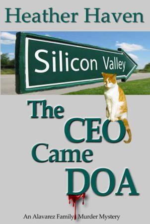 CEO-Silver Silicon Valley copy