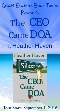 THECEO CAME DOA small banner