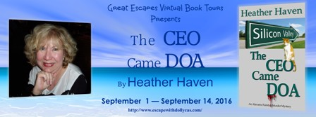 the ceo came doa large banner448