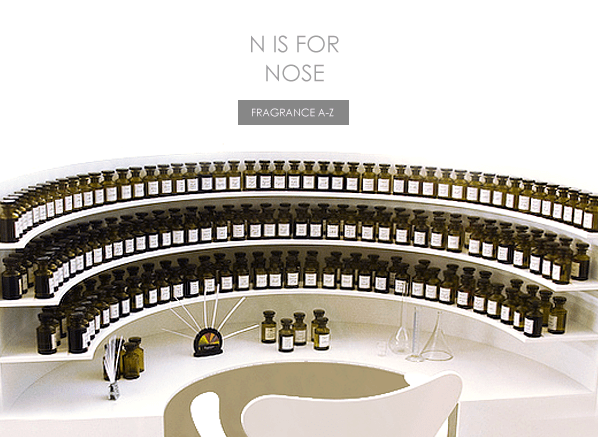 N is for Nose...