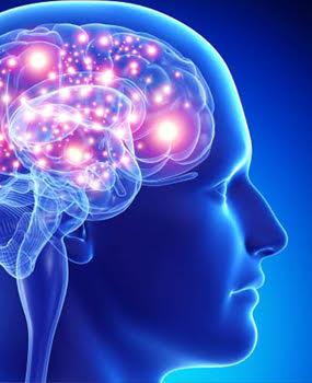 Máster Online en NeuroMarketing