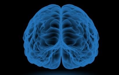 Neuromarketing y Neurociencia