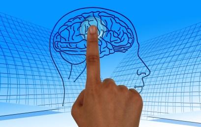 Neurociencia aplicada a la Empresa: NeuroManagement