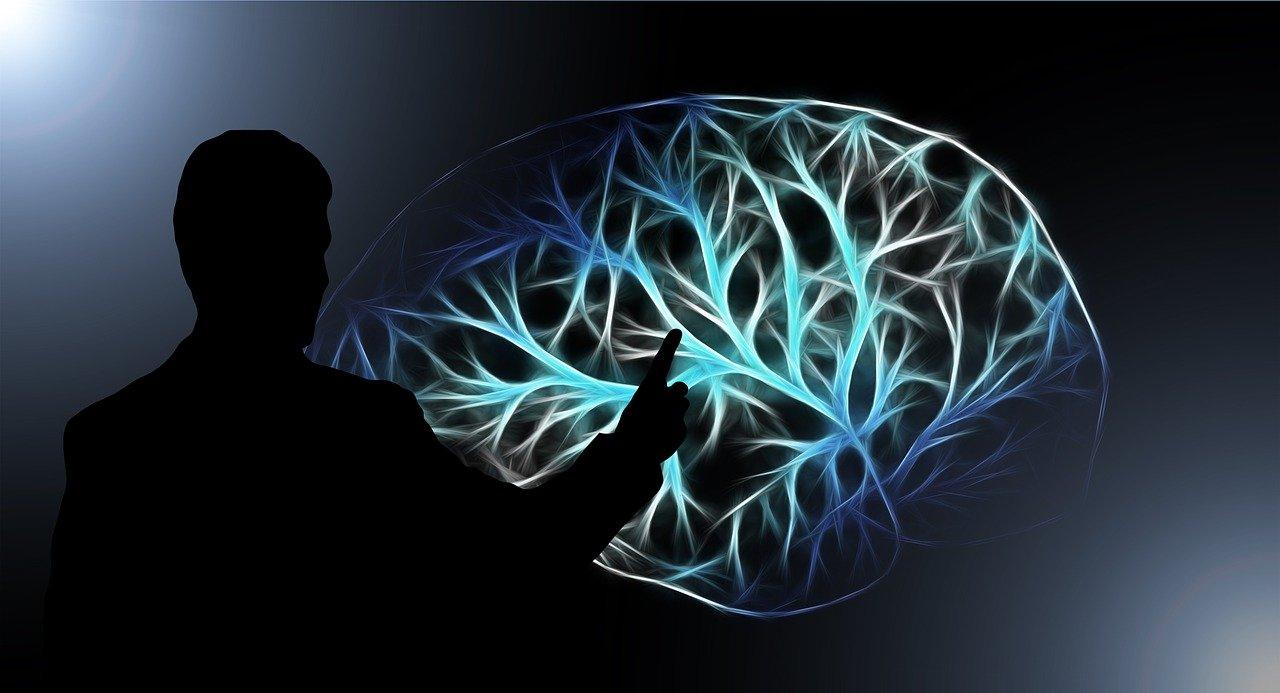 Los 4 Poderes del Cerebro para un Liderazgo Exitoso