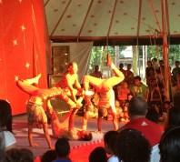 Mostra de circo do recife - 2015 (10)
