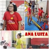 Ana Luiza arte
