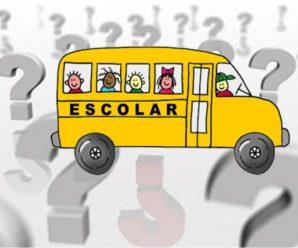 Transporte escolar registra abertura de mais de 10 mil novos MEIs no ano passado