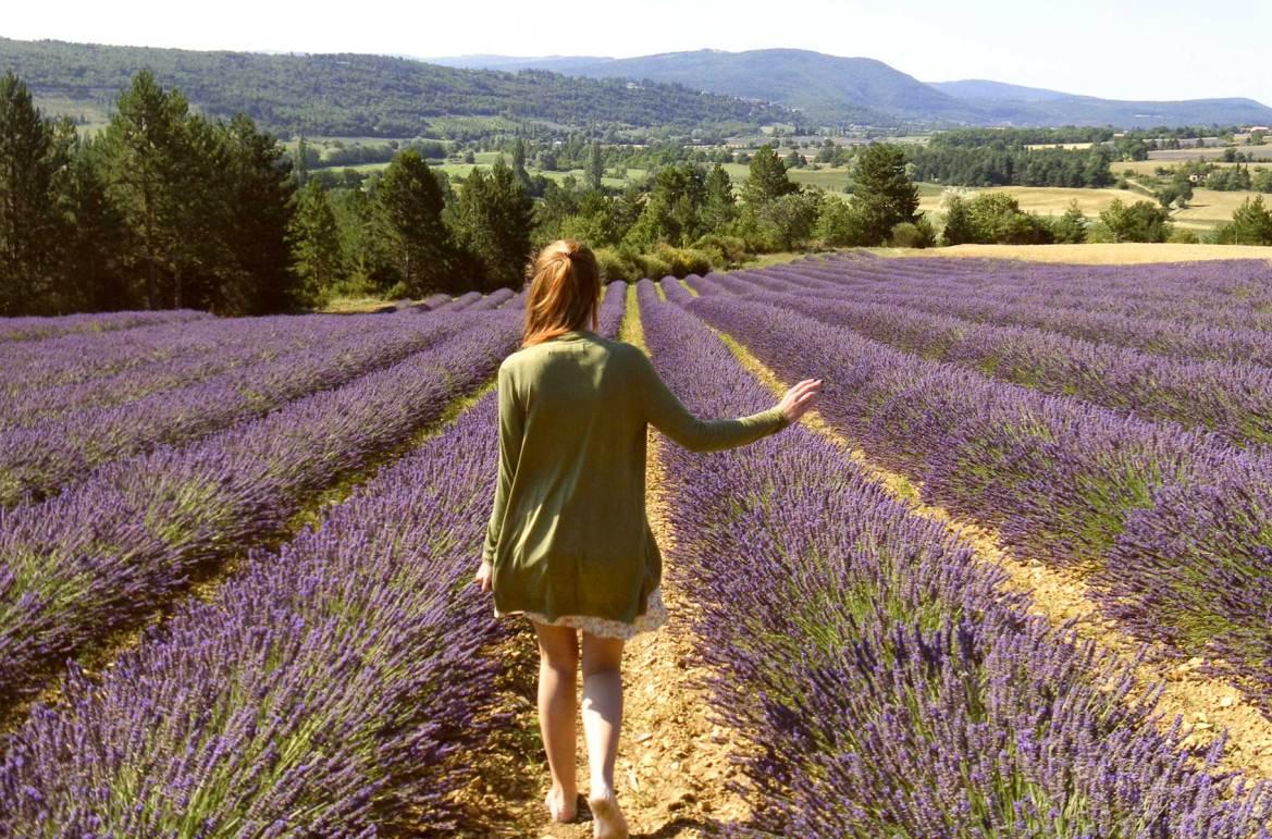 Fotos de viagem - Avignon, Provence (França)