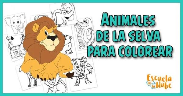Animales De La Selva Para Colorear Escuela En La Nube