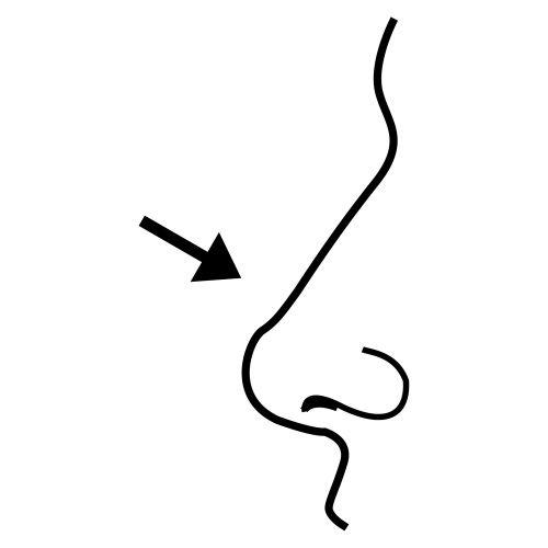 nariz para colorear colouring pages