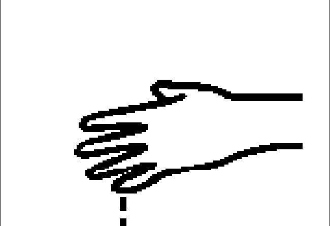 pictogramas243