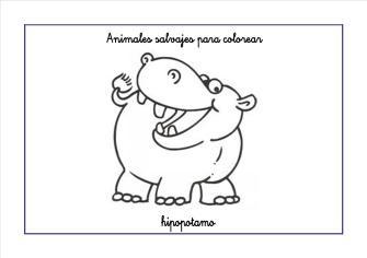 hipopotamo colorear