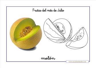 frutas_melon