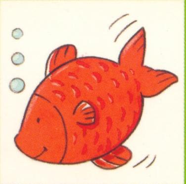 animales marinos 43