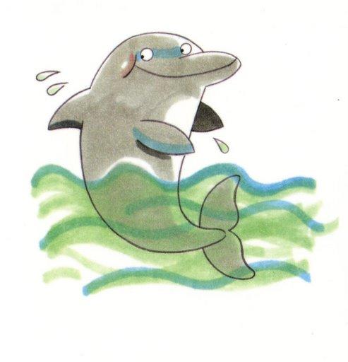animales marinos20