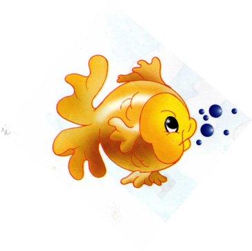 animales marinos24