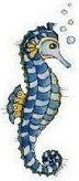 animales marinos39