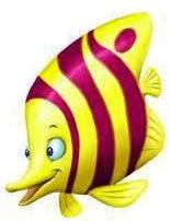 animales marinos61